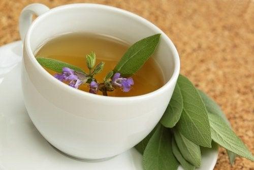 Slip af med mavefedt med salvie te.