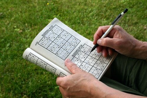 Person der loeser sudoku