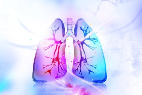 7 fødevarer, der kan fjerne nikotin fra dit system