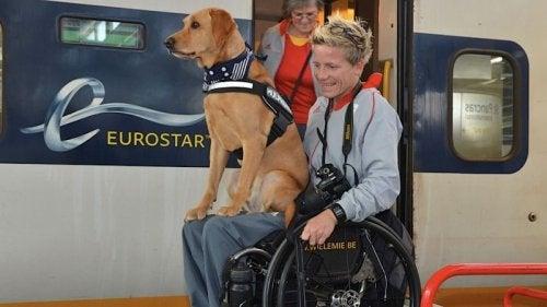 Marieke og en hund - aktiv doedshjaelp