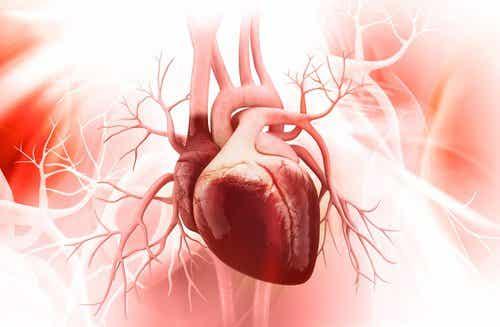 8 dårlige vaner, som kan skade hjertet