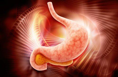Denne teknik kan opdage mavekræft på blot to timer