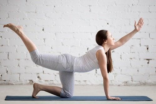 Din lænd har brug for øvelser for at holde sig i form