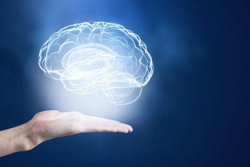 Perfekte tricks til at booste din hukommelse
