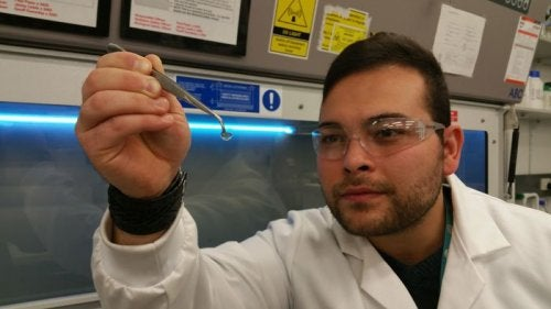 Disse hydrogel hornhinder kan give synet tilbage hos millioner
