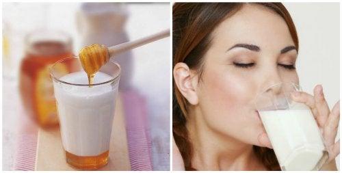7 grunde til du burde tage et glas mælk med honning før sengetid