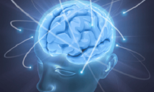 En persons hjerne