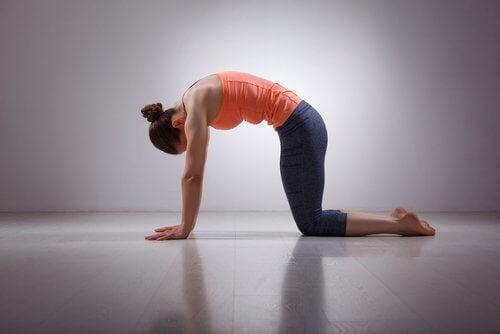 Du kan lindre muskelsmerter med forskellige øvelser