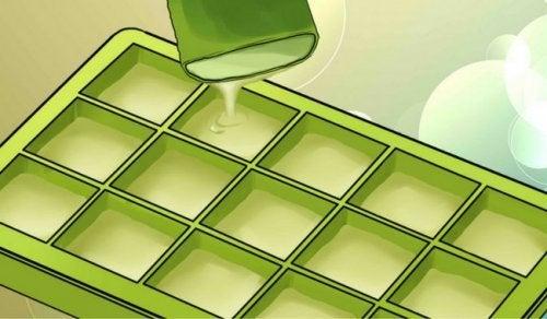 De forbløffende fordele ved at fryse aloe vera