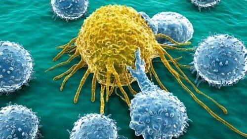 En ny molekyle skabt til at behandle kræft i livmoderhalsen og bugspytkirtlen