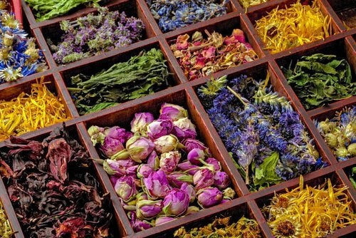 En masse forskellige naturlige urter