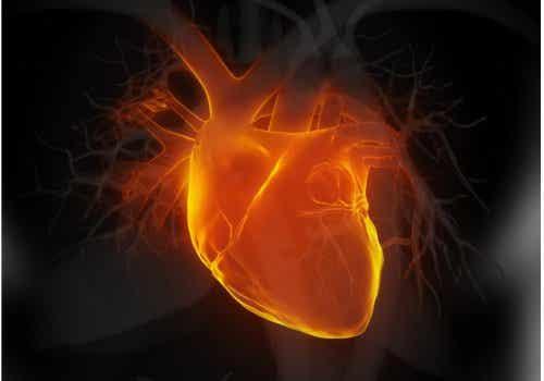 Hold øje med disse 6 tidlige tegn på hjertesvigt