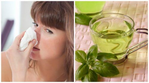 Bekæmp tilstoppet næse med disse 5 naturlige midler