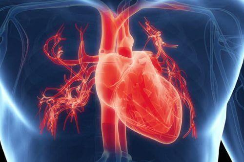 symptomer på hjerteproblemer