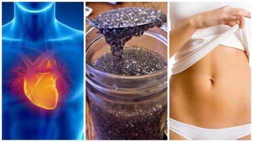 8 grunde til at starte med at inkludere chiafrø i din kost