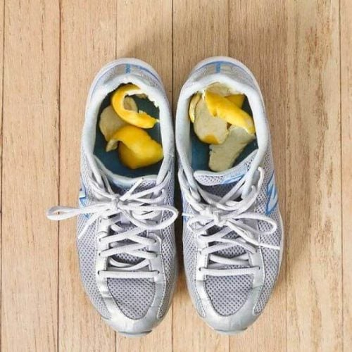Kondisko med citronskrael