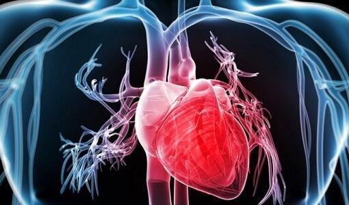 Hjertestopsymptomer du kun finder hos kvinder