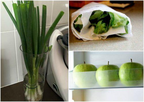 9 fif til at holde din mad frisk længere