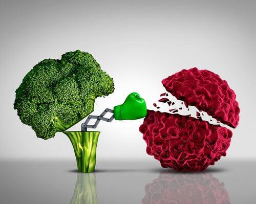 Broccoli der bokser en kraeftcelle