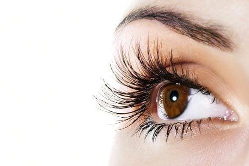 Denne naturlige balsam kan hjælpe dig med at få ekstra lange øjenvipper