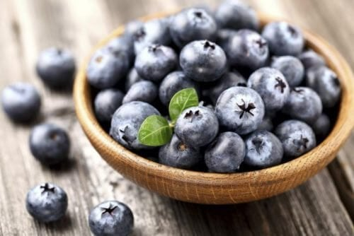 Hvordan du kan dyrke blåbær derhjemme og hvordan du kan bruge dem
