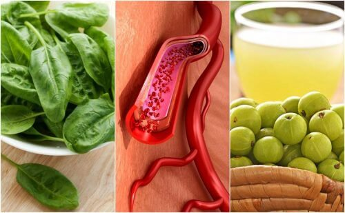 5 fødevarer til sundere blod og en glad krop