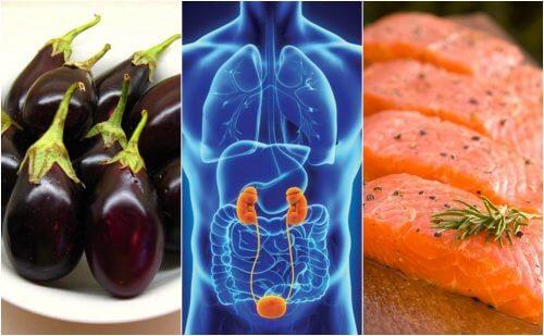 7 fødevarer der naturligt hjælper med at fremme sunde nyrer