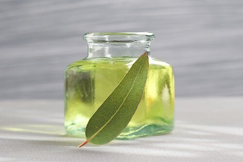 Eukalytpus olie