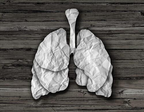 Kronisk bronkitis