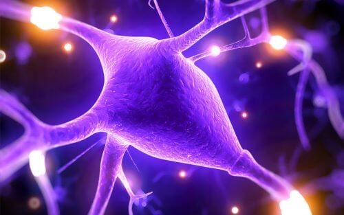 Fem måder magnesium styrker din kognitive kapacitet