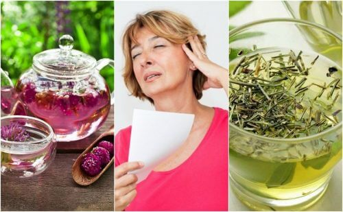 Seks naturlige kure mod hedeture i overgangsalderen