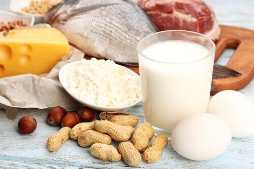 Proteinrige foedevarer - traeningen mindre effektiv