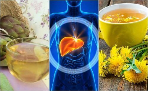 Forebyg fedtlever naturligt med 5 urtemidler