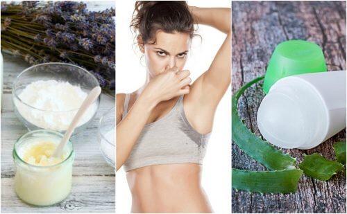 5 naturlige deodoranter til at eliminere dårlig lugt i armhulerne
