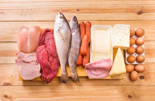 Proteinrige madvarer