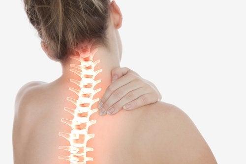 Kvindes rygsoejle - aeg til din kost