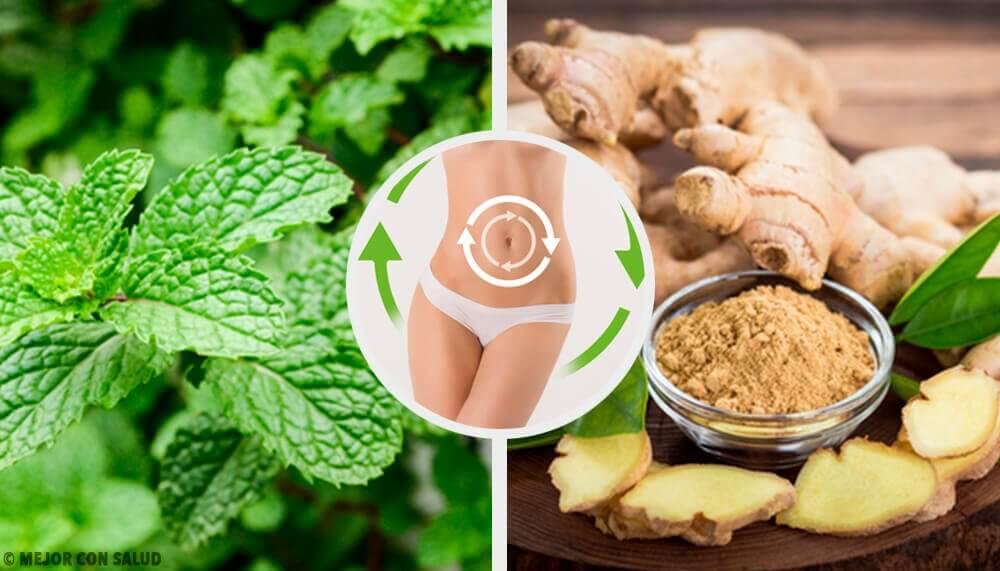 Ingefaer og mynte - teer til en sund krop