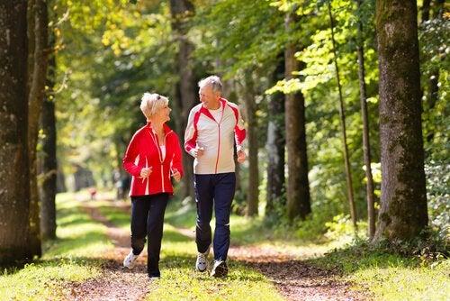 Aeldre par der loeber i skoven