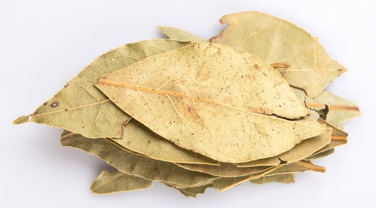 Laurbaerblade - styrke dine lunger