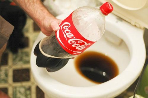 Cola toiletrens