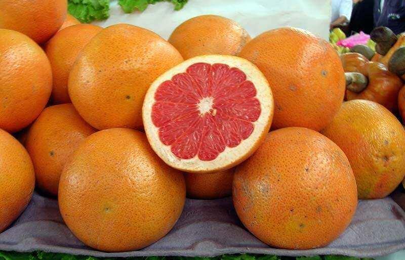Grapefrugter