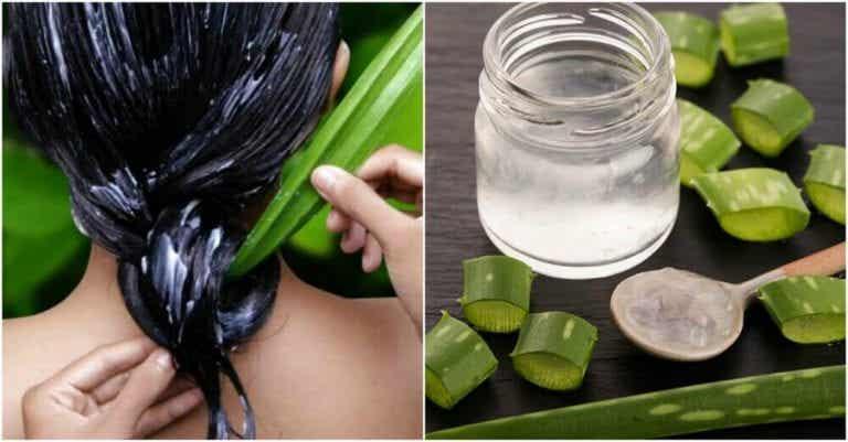 Sådan får du sundere hår med aloe vera