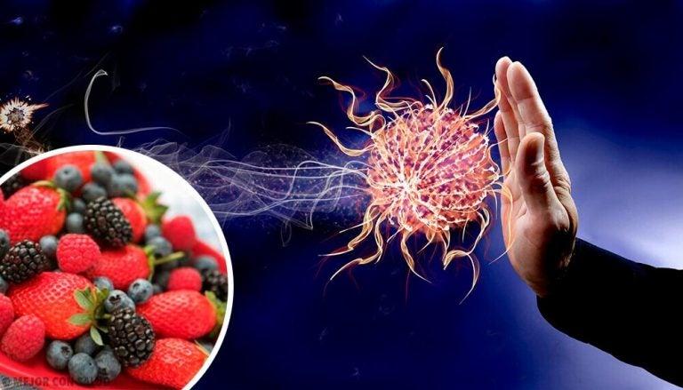 9 fødevarer der styrker immunforsvaret