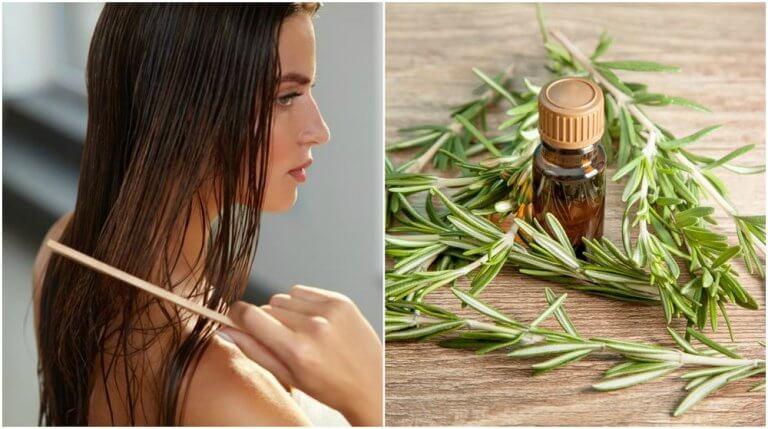 5 interessante fordele ved rosmarin for dit hår