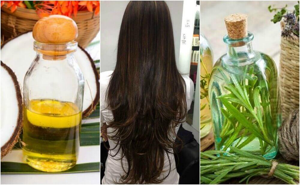 Stimuler hårvækst med denne hjemmelavede behandling