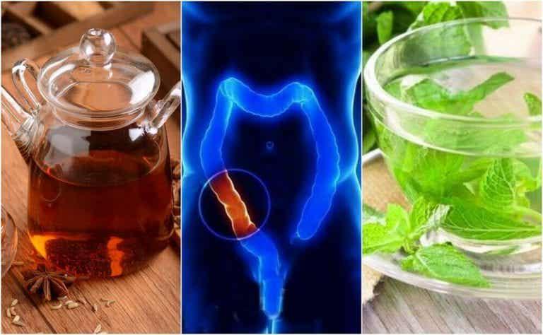 5 medicinske infusioner til tyktarmen