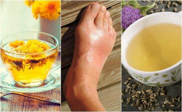 De 5 bedste teer til at reducere urinsyre