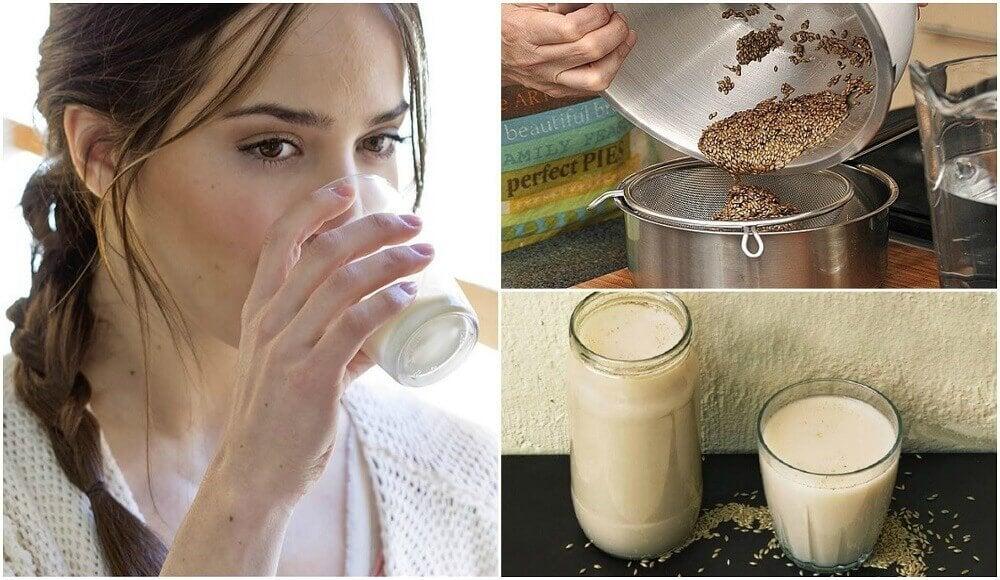 Kanariefrømælk: Hvad er det, og hvordan laver man det?