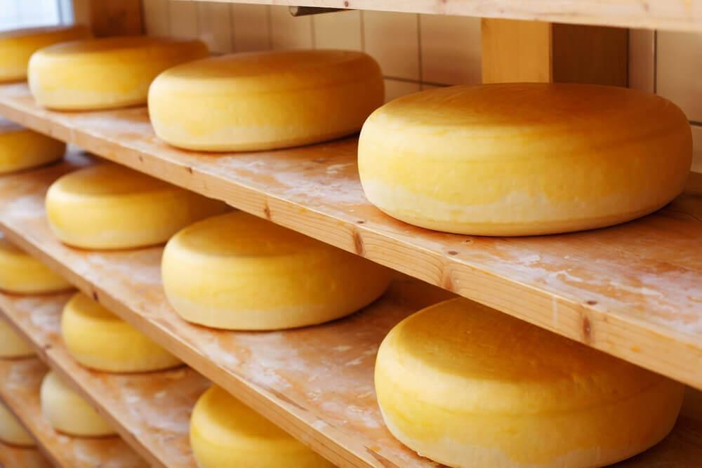 Lagrret ost er sundt
