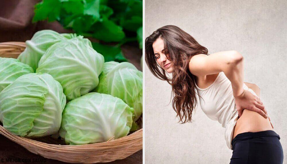 Naturmiddel med ler, eddike og kål til at reducere brok